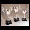 Click this Image to visit the Cup Trophy Awards category.