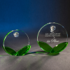 Palmbrook Green Optical Crystal Awards