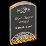 Gold Horizon Acrylic Achievement Awards