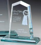 Hamilton Peak Crystal Glass Awards