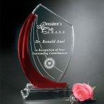 Ruby Shadow  Red Optical Crystal Awards
