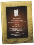 Gold & Burgundy Acrylic Art Plaque Award SHOWROOM - Acrylic