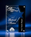 Star Cutout Clear and Black Acrylic Award Star Acrylic Awards